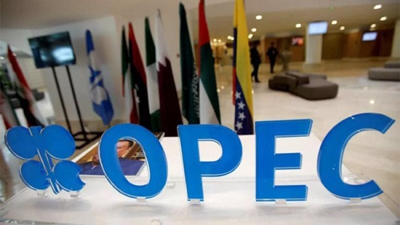 OPEC petrol üretiminde kesintiye gidecek